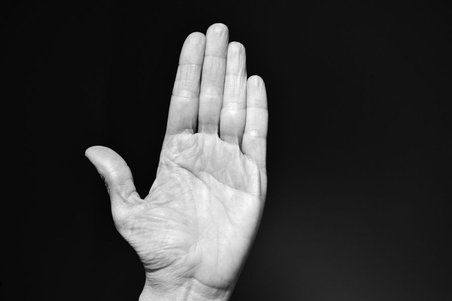 A portrait of a hand