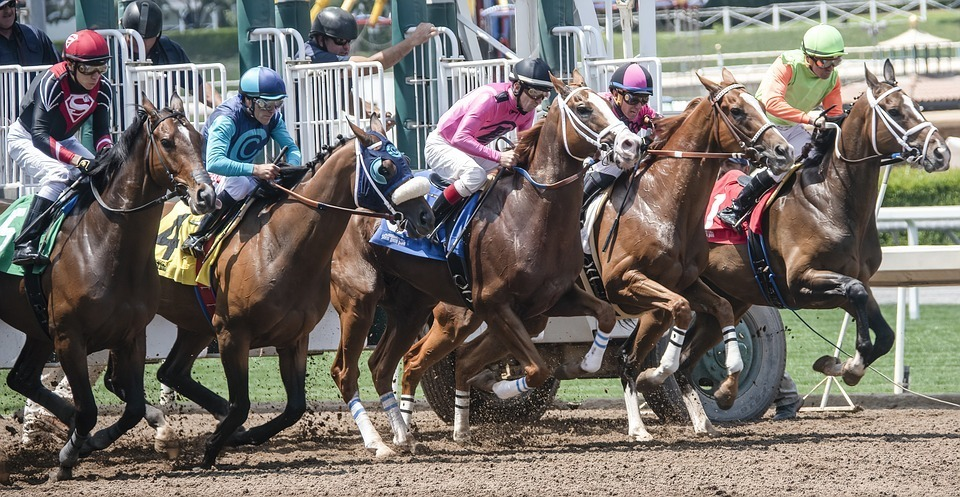 As you start out on your quest to look for the weekend's best horse tips, it is important to ensure that you understand all of the terms and phrases that you encounter in the world of horse race betting. Whether you are at the track for a great day out, watching on the TV with friends, or simply enjoying a quiet weekend of racing on your own, there is plenty to think about and to navigate through as you place your bets. Here we take a look at horse betting terms as we ask: what are final declarations in horse racing? As you will know, many bookmakers offer ante-post betting for races. This happens for the big race meetings and is designed to get people betting and thinking about the races well in advance of the event. Some bookies may even open the betting for an annual race of meet as soon as the year's event finishes. Bettors are free to place their bets before the racing begins. However, 24-48 hours ahead of the race itself taking place, the trainers and riders must declare that they still intend to race in the event. This is known as the final declarations. Of course, it is clear to see that if betting has happened in advance of the race - up to a year in advance if you take our earlier example - then, it is likely that some horses may not be fit or ready to race as was expected. So, if that is the case and they are not included in the final declarations for the race, then the money that has been placed on the horse as a bet needs to be reclaimed or rebet. When this happens, the bookie changes the status of the horse and the bet to a non-runner, no-bet or non-runner-money back. Each course and event may have slightly different rules surrounding final declarations, and the amount of time given can vary depending on the type and grade of race concerned. For example, the BHA stipulates that declarations to run in a race on a Sunday must be made on the Friday prior to the race. Declarations for horses and riders taking part in flat races must be made two days prior 